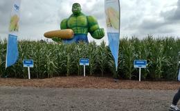 Schwarzenegger trifft Hulk: Hasta la Vista, Kolben!