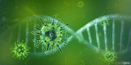 Coronavirus-Ausbruch unter jungen Menschen im Raum Schlüchtern