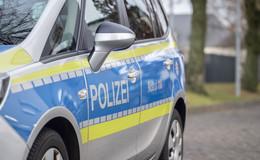 Wasserbüffel bei Unfall auf Landstraße leicht verletzt