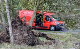 Bäume stürzen auf Landstraße: Sechs Menschen von der Feuerwehr gerettet