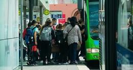 Schulbusfahrer mit gefälschtem Führerschein bei Kontrolle aufgeflogen