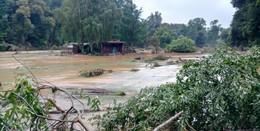 Wildpark plant Spendenaktion am Sonntag: Für zerstörten Tierpark an der Ahr