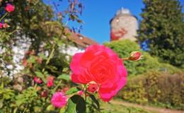 Naturgarten am Schloss: Gerade für Kinder ein Wunderwerk