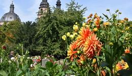 Letzte Öffnungstage: Dahliengarten, Wasserspielplatz und Wassertretbecken
