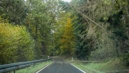 Sturmtief Ignaz in Osthessen - Umgestürzte Bäume und hohe Sachschäden