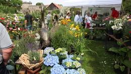 Gartenfest in Friedewald geht in den letzten Tag