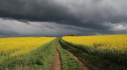 Deutscher Wetterdienst warnt erneut vor Gewittern und Starkregen