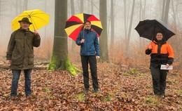 Marktgemeinde erhält Bundeswaldprämie in Höhe von 27.600 Euro