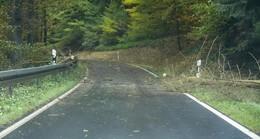 Sturmtief Ignaz wütet in Osthessen: Baum stürzt auf fahrendes Auto