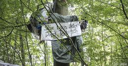 AStA-Workshop im Dannenröder Forst sorgt für heftige Kritik
