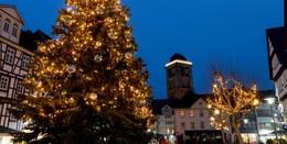 Wanted: Repräsentabler Weihnachtsbaum für den Linggplatz