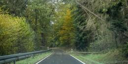 Das war Sturmtief Ignaz im Vogelsberg: 30 umgestürzte Bäume
